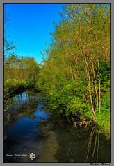Valle Olona 1 (filippi antonio) Tags: blue trees sky verde green primavera nature alberi river landscape spring fiume natura lombardia paesaggio olona valleolona varesotto lonateceppino