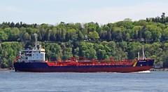Esta Desgagnes (Jacques Trempe 2,270K hits - Merci-Thanks) Tags: canada river ship quebec stlawrence stlaurent esta tanker fleuve navire stefoy desgagnes petrolier