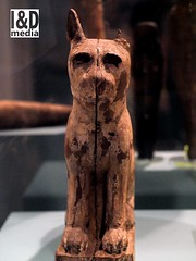Wooden sarcophagus for a cat offering. (Internet & Digital) Tags: cats ancient god hawk victorian egypt ibis horus ritual mummy isis sacrifice osirus ancientegypt offerings mummified thoth mummifiedcats
