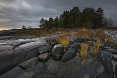 Dawn and wet rocks (- David Olsson -) Tags: morning trees oktober nature wet clouds sunrise landscape dawn early nikon october rocks cloudy sweden outdoor cliffs fx grad vr d800 hammar moist vrmland 1635 1635mm gnd goldengrass 2013 leefilters bonsudden fiskvik davidolsson rggrdsviken 06hard 1635vr