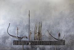 Brons (Pieter Musterd) Tags: holland schilder canon artist nederland canon5d nl kunstenaar beeldhouwer denandel jansteen musterd provinciegroningen pietermusterd canon5dmarkii pmusterdziggonl