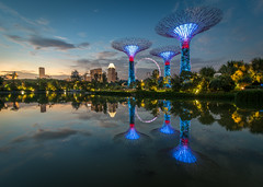 Supertree Grove - Singapore (PattyLK) Tags: sunset reflection gardens by marina garden bay singapore grove sands the supertree