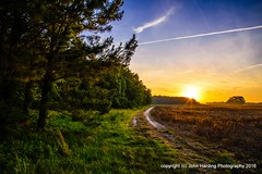 The Path From the Wetlands (T i s d a l e) Tags: spring path may farmfield easternnc tisdale 2016 thepathfromthewetlands
