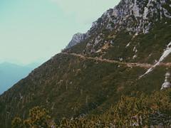 Dolomiti (Sofia Podest) Tags: mountain landscape cortina dolomiti alpi alps dolomites summer 2009 memories hiking hike trekking italy sunshine sofia podest zobeide