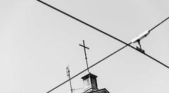 Crossed (lorenzoviolone) Tags: sky blackandwhite bw italy roma church monochrome blackwhite reflex nikon cross streetphotography wires electricity wired streetphoto dslr antenna antennas lazio crossed agfascala200 vsco d5200 streetphotobw nikond5200 vscofilm photomarathon:rome=2016