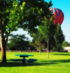 peek a boo (johngpt) Tags: trees tree grass bench places hotairballoons picnictable inthepark hbm benchmonday fujinonxf55200mmf3548rlmois fujifilmxt1