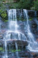 _MG_4651.jpg (MD & MD) Tags: family vacation june candid australia downunder 2016 bluemountainsnationalpark otherkeywords