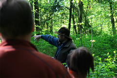 Surveying (wildliferecreation) Tags: forest washington urbanforest bothell northcreekforest