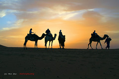 Maroc -  - Dunes de Merzouga (jmboyer) Tags: voyage africa travel portrait people tourism beauty face canon landscape photography soleil photo yahoo google flickr image photos northafrica retrato picture silhouettes images viajes morocco maroc planet maghreb lonely lonelyplanet tradition monde marruecos canoneos silhoutte couleur marokko sud gettyimages tourisme visage nationalgeographic afrique tribu travelphotography googleimage go dromadaires afriquedunord afriqua ethnie besttravelphotos tumblr photoflickr photosflickr canonfrance  photosyahoo imagesgoogle jmboyer mar1383 photogo nationalgeographie photosgoogleearth