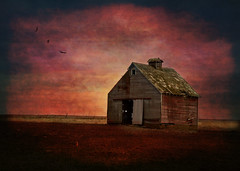 Corn Crib [EXPLORED] (keeva999) Tags: red texture abandoned rural nikon colorful farm country rustic barns iowa frenchkiss hss cherokeecounty d3200 memoriesbook darkwood67