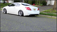IMG_6205 (misha/rat4life) Tags: nissan bc wheels racing misha 18 altima coupe airlift aerosport airhouse bagriders rat4lifemisha