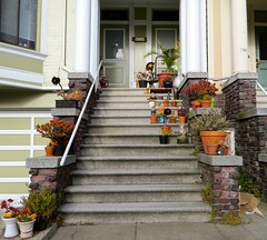 Plants on steps (Walter Parenteau) Tags: plants house san francisco apartment full stoop potted 2013