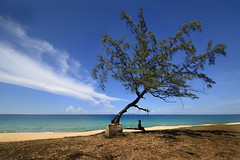 Welcome to Terengganu (Tuah Roslan) Tags: ocean old travel blue boy sea summer wallpaper vacation sky cloud abstract tree