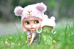 The Pink Bears Unite! *Strawberry Muffin & Macha**