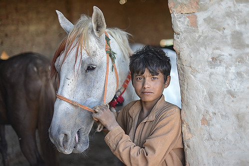 Week 24 - Portrait from Pakistan