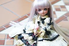 DSC01146 (zeky_afa) Tags: doll bjd roko ciaobella bambicrony
