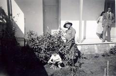 Maroc, Casablanca, le 20 avril 1947, le plant de tomates d'Etienne Menjoulet (Jeanne Menjoulet) Tags: morocco 1940s maroc casablanca 1947 années40