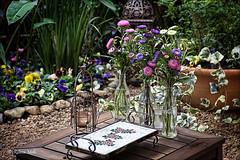 Still life in a rural garden (Rebeca Mello) Tags: flowers camp stilllife rural canon garden table mosaic country mosaico jardim campo tray campestre bandeja canoneos50d rebecamello rebecamcmello