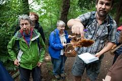 Kings Weston fungus foray (Kings Weston Action Group) Tags: park nature mushroom bristol estate action walk group kings website fungus toadstool weston guided kwag kingsweston