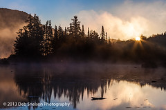 Marshfield Pond-6344 720 (Deb Snelson) Tags: autumn fog sunrise vermont fallcolor grotonstateforest marshfieldpond