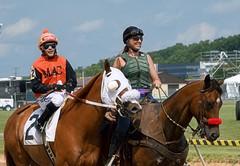 2013-09-01 (54) r2 Wesley Ho on #2 Spicy Salsa (JLeeFleenor) Tags: horses caballo cheval photography photos statefair uma maryland cal jockey ho jinete cavallo cavalo pferd equestrian kuda alogo equine hest thoroughbreds soos hevonen cuddy paard cavall kon koin timonium  jokey fantino hst ceffyl  jquei  ko faras hestur  mdstatefair perd ngi  konj    capall beygir yarraman dokej rennreiter  pfeerd wesleyho marylandhorseracing marylandracing   okej kilparatsastaja jocheu