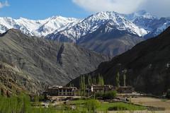 Yangthang village - Ladakh (-AX-) Tags: india snow mountains village snowy himalaya himalayas jk ladakh montagnes tibetanplateau yangthang indusvalley btimentmaison