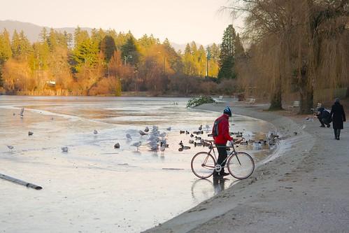 Frozen Lost Lagoon