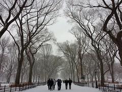 Central Park-The Mall, 12.14.13 (gigi_nyc) Tags: nyc newyorkcity winter snow centralpark electra themall