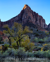 Watchman at Dawn II_1086_87_88 (chasingthelight10) Tags: travel mountains nature sunrise photography dawn landscapes utah events places highdesert vistas sunrises zionnationalpark canyons thewatchman otherkeywords