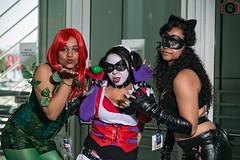 2013 Anime Expo - Day 4 (Darc G) Tags: anime female costume cosplay convention batman dccomics catwoman poisonivy darkknight harleyquinn villan 2013 ax13 ax2013 laanimeexpo