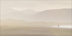 Desert Walk (Bill Power Photography) Tags: morning pink ireland sea mountains beach water yellow landscape dawn inch rocks seascapes tide scenic dingle kerry d800 billpower