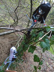 Climb up (Suteki_Neko) Tags: tree climb doll outdoor ivy purrsephone monsterhigh meowlody werecattwins