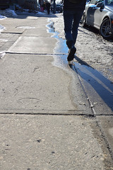 Puddle Jumper (KW-2501) Tags: street toronto ontario canada college nikon iso400 streetphotography 400 collegest f8 18105 d3200 18105mm shootthestreet