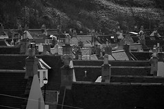 Climbing On The Roofs (4oClock) Tags: houses homes chimney bw white black monochrome sunshine easter mono coast scotland town spring nikon aberdeenshire weekend traditional north scottish roofs april nikkor dslr moray stacks cullen 18105 slates d90 banffshire