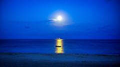 DSC05918 (Orhan Kl) Tags: night mehtap ineada