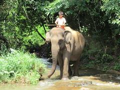 Mondolkiri, Cambodge