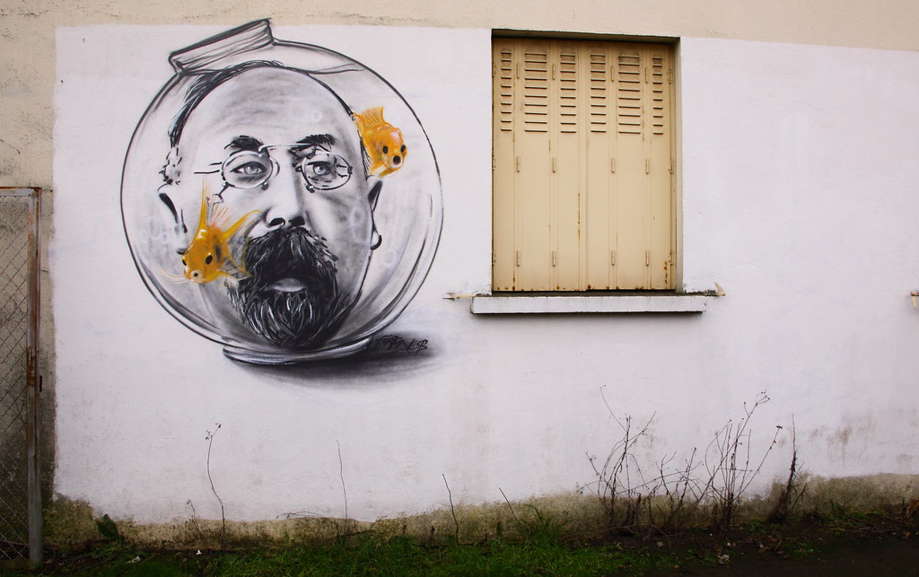 The world 39 s best photos of boule and graffiti flickr for Bocal mural poisson