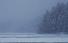 Wenn die Schwarzwlder von Wind, wie hier im Windgfllweiher, sprechen, meinen sie wohl Schneesturm? (Manuela Salzinger) Tags: winter lake ice water see pond wasser eis schwarzwald blackforest weiher windgfllweiher
