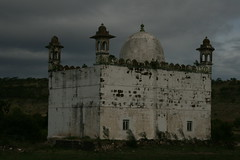 2009 (82)