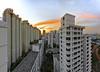 TWB_3031 Panorama