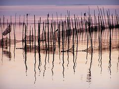 Reflejos (Japo Garca) Tags: azul marina mar rosa paz paisaje colores naranja olas siluetas palos ondas reflejos ocre dorado pescadores fotografa pescar tranquilidad airelibre serenidad japogarca