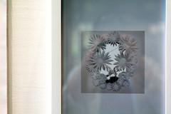 Pushing daisies - Art by Emilia (Poupetta) Tags: art finland ham emilia pushingdaisies helsinkiartmuseum killingyourdarlings