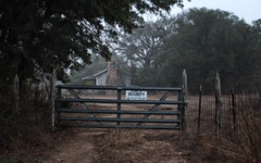 The Old Farmhouse on Leander (Explored June 1, 2016) (Anne Worner) Tags: autumn trees chimney mist brick fall abandoned grass sign fog oak gate texas path grain security foliage filter liveoak porch layers smear gated surrounded stubble protected leander wirefence inaccessible securitysign decorativebrick ononesoftware hindered leanderroad leavesbrances texasshack