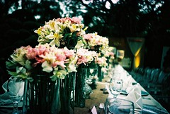 a summer banquet (Stitch) Tags: flowers wedding film dinner garden lens table lomo lca xpro crossprocessed fuji philippines reception manila banquet diliman expired russian provia openair quezoncity asa100 refurbished deadstock