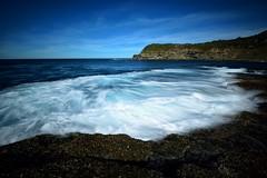 Surging Wave (Paul Hollins) Tags: ocean longexposure seascape seaside nikon waves australia d750 newsouthwales aus f4 freemans 1635 catherinehillbay watermovement frazerpark nikon1635mmf4 nikond750