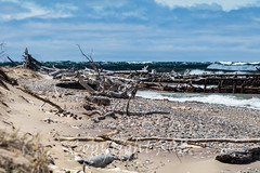 Michigan_North-0734.jpg (CitizenOfSeoul) Tags: usa beach sand michigan may greatlakes shore northamerica upperpeninsula lakesuperior whitefishpoint 2016