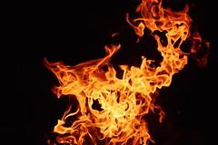 The Fire Dragon (Caroline.32) Tags: orange catchycolors fire dragon flames campfire nikond3200 55300mmlens