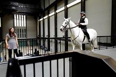 Tania Bruguera (Cuba) : Tatlin's Whisper #5 (aka Jon Spence) Tags: horse london art girl gallery performance police tatemodern mounted policeman londonist policehorse taniabruguera tatlinswhisper