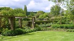 Barrington Gardens (richwall100 - Thank you for Two Million views) Tags: flowers trees gardens lawn somerset nationaltrust shrubs pergola barringtoncourt