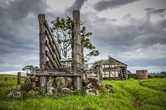 ds_set_cattleramp. 2 (davidspeight) Tags: rural cattle farm rustic australia dairy hinterland northernrivers knockrow